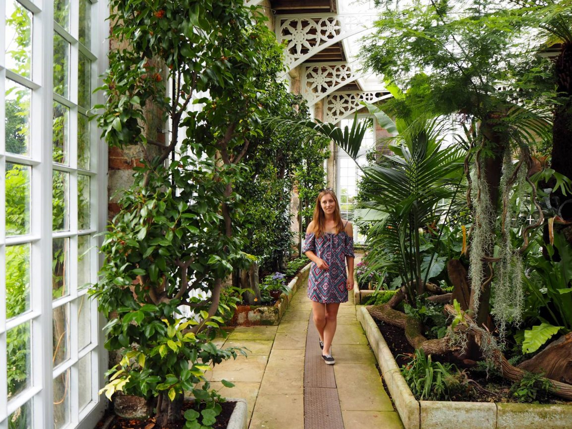 Exploring Camellia House at Woburn Abbey