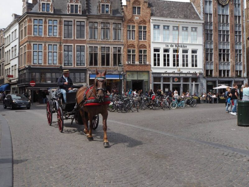 Horse and Carriage Ride in Bruges