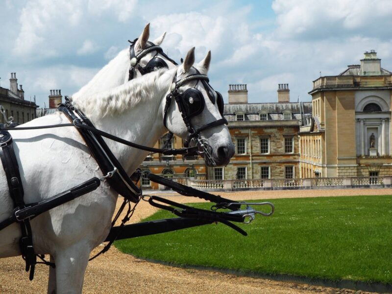 Woburn Abbey and Gardens Horse Carriage Rides