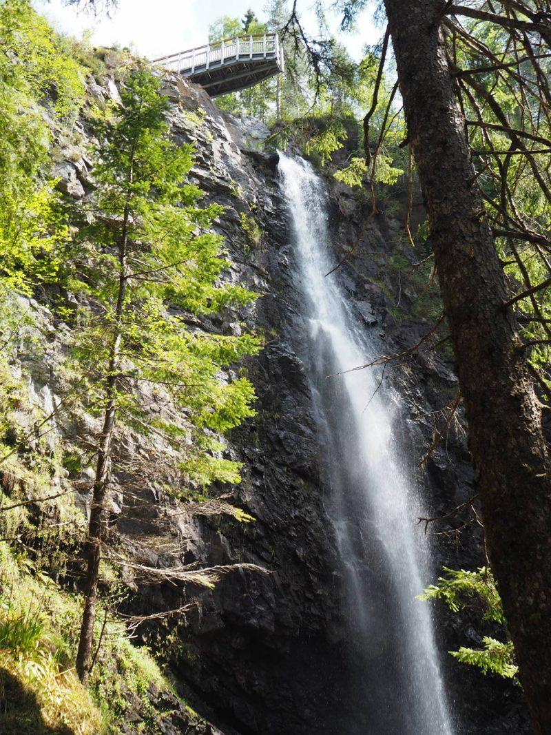 Walking the trails at Plodda Falls. Looking up at the viewing platform