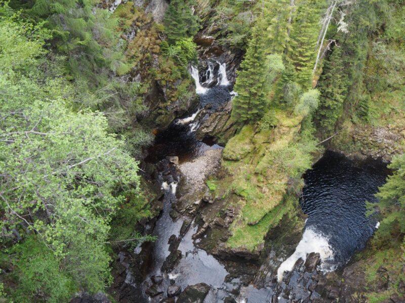 View from the platform at Plodda Falls